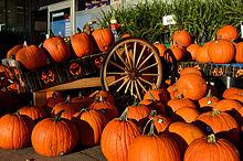 HalloweenPumpkin2