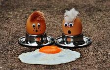 egg-1364869_640