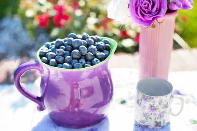 blueberries-summer-fruit-fresh.jpg
