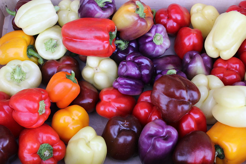 Colorful_Bell_Peppers